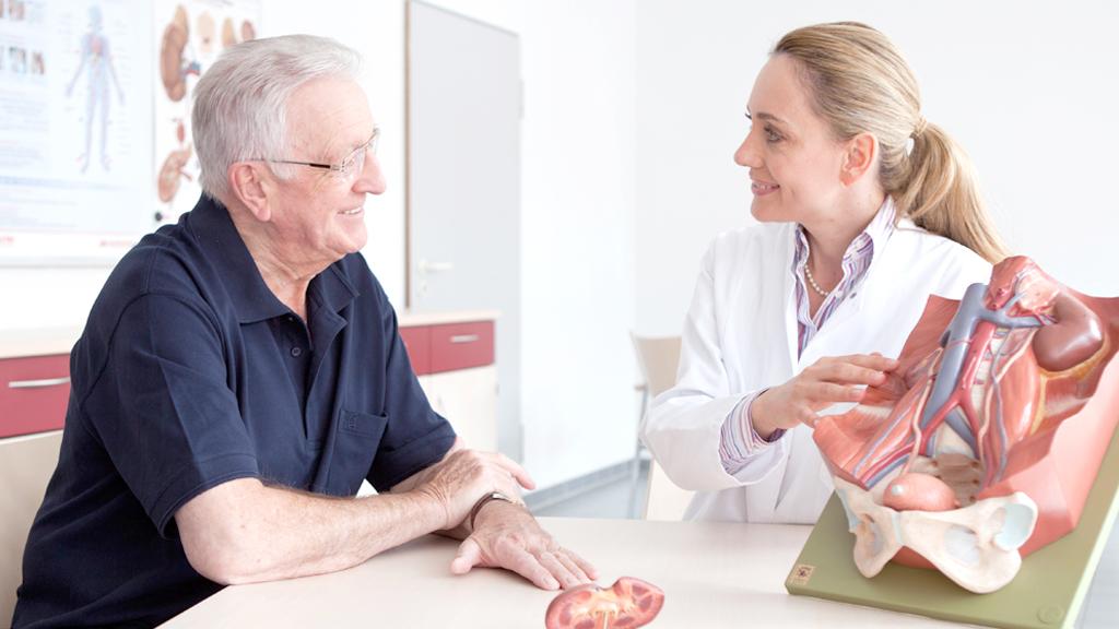KfH e.V. - Nierenwissen: Wo sind die Nieren im Körper angelegt?